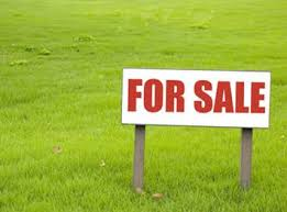 Farm For Sale Sign