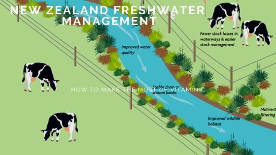 nz freshwater manangement, waibury blog